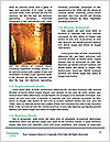 0000084405 Word Templates - Page 4