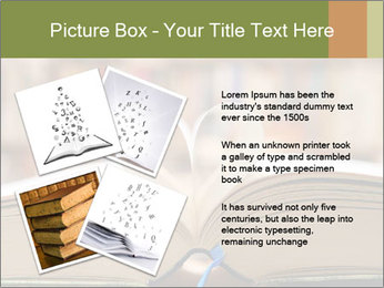 0000084429 PowerPoint Template - Slide 23