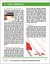 0000084440 Word Template - Page 3