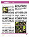 0000084441 Word Template - Page 3