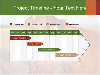 0000084443 PowerPoint Templates - Slide 25
