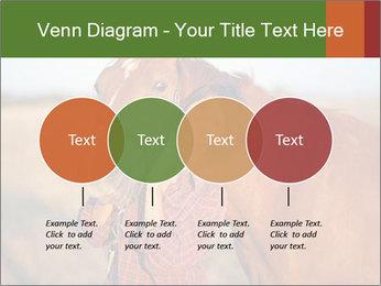 0000084443 PowerPoint Templates - Slide 32