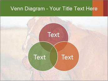 0000084443 PowerPoint Templates - Slide 33