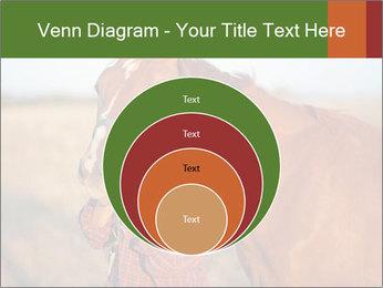 0000084443 PowerPoint Templates - Slide 34