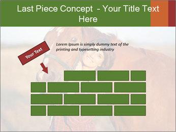 0000084443 PowerPoint Templates - Slide 46