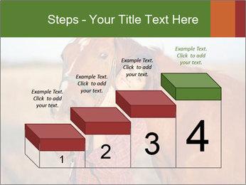 0000084443 PowerPoint Templates - Slide 64