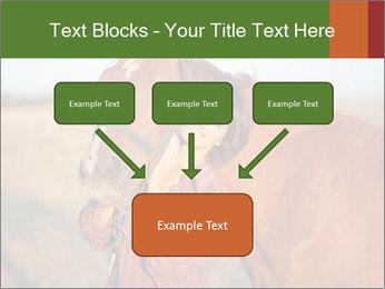 0000084443 PowerPoint Templates - Slide 70