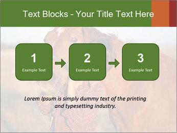 0000084443 PowerPoint Templates - Slide 71