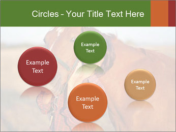 0000084443 PowerPoint Templates - Slide 77