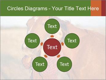 0000084443 PowerPoint Templates - Slide 78