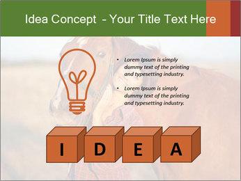 0000084443 PowerPoint Templates - Slide 80
