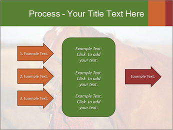 0000084443 PowerPoint Templates - Slide 85