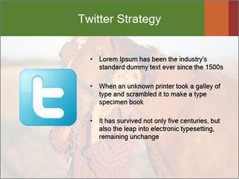 0000084443 PowerPoint Template - Slide 9
