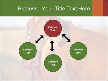 0000084443 PowerPoint Templates - Slide 91