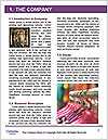 0000084447 Word Template - Page 3