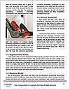 0000084447 Word Template - Page 4