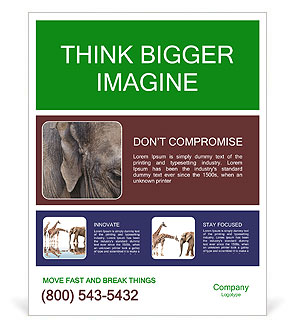 0000084460 Poster Template