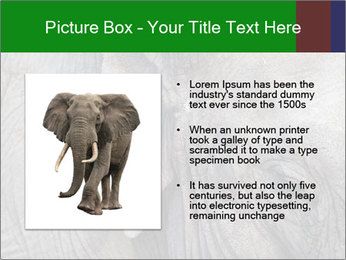 0000084460 PowerPoint Templates - Slide 13
