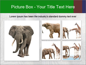0000084460 PowerPoint Templates - Slide 19