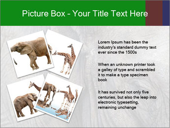 0000084460 PowerPoint Templates - Slide 23