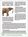 0000084460 Word Template - Page 4
