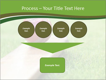 0000084463 PowerPoint Template - Slide 93