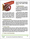0000084463 Word Templates - Page 4