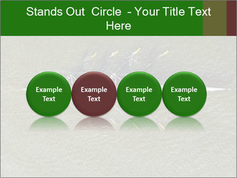 0000084467 PowerPoint Template - Slide 76