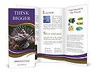 0000084473 Brochure Templates