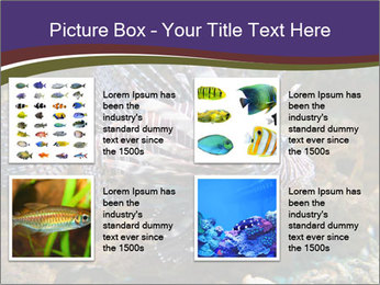 0000084473 PowerPoint Template - Slide 14