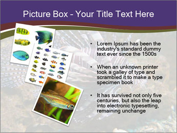0000084473 PowerPoint Template - Slide 17