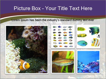 0000084473 PowerPoint Template - Slide 19