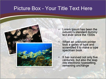 0000084473 PowerPoint Template - Slide 20