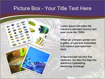 0000084473 PowerPoint Template - Slide 23