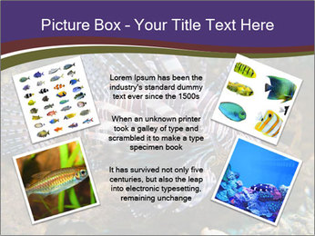 0000084473 PowerPoint Templates - Slide 24