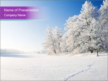0000084474 PowerPoint Template - Slide 1