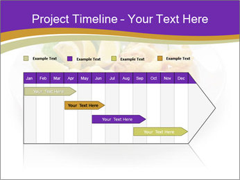 0000084480 PowerPoint Templates - Slide 25