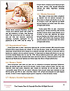 0000084481 Word Templates - Page 4