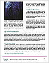 0000084484 Word Template - Page 4