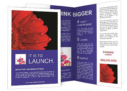 0000084488 Brochure Template