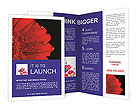 0000084488 Brochure Templates