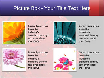 0000084488 PowerPoint Templates - Slide 14