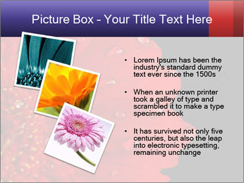 0000084488 PowerPoint Templates - Slide 17