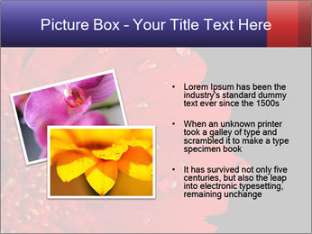 0000084488 PowerPoint Templates - Slide 20
