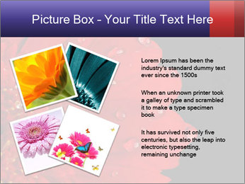 0000084488 PowerPoint Templates - Slide 23