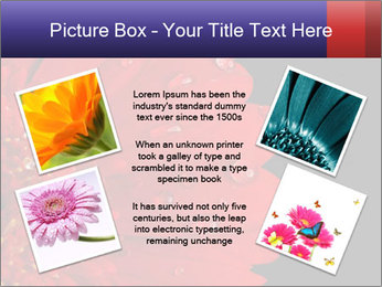 0000084488 PowerPoint Templates - Slide 24