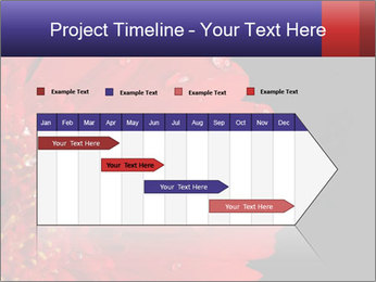 0000084488 PowerPoint Templates - Slide 25