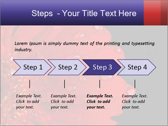 0000084488 PowerPoint Templates - Slide 4