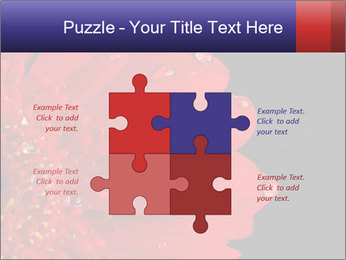 0000084488 PowerPoint Templates - Slide 43