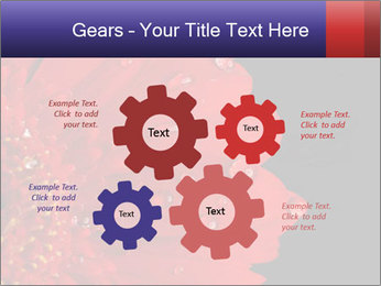 0000084488 PowerPoint Templates - Slide 47